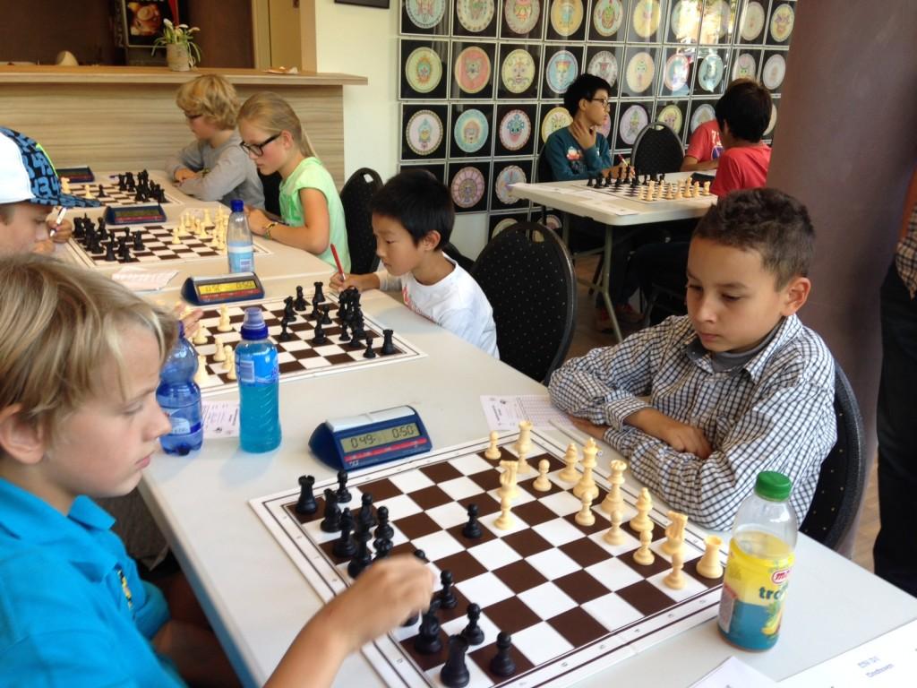 NK schaken